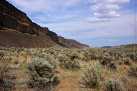Moses Coulee Preserve